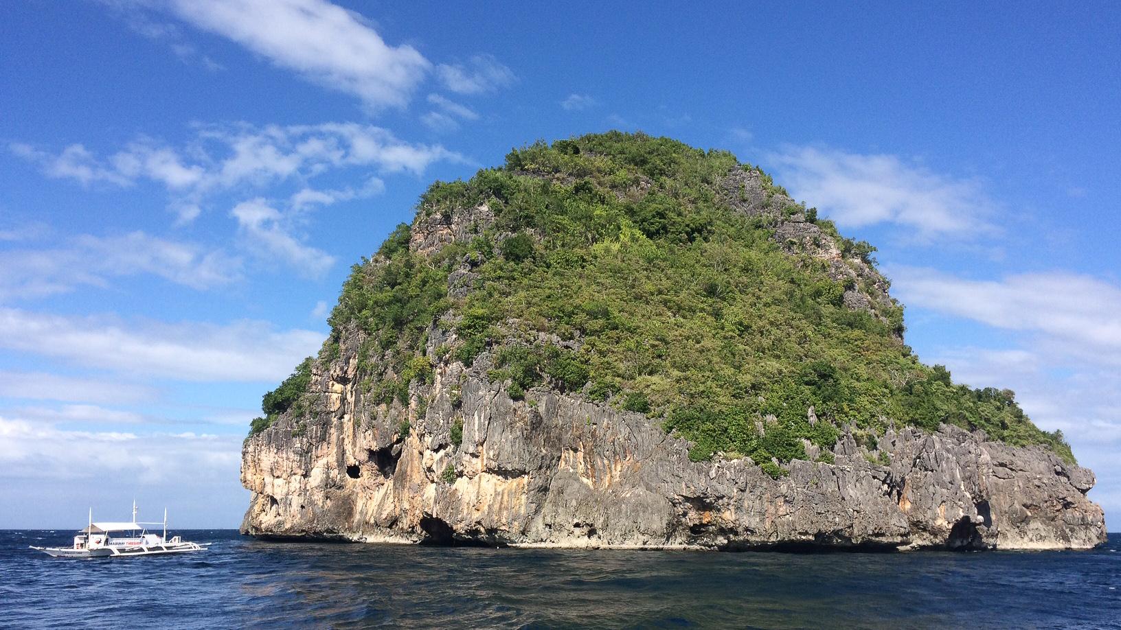 Gato Island portrait